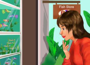 انتخاب بهترین ماهی آب شیرین