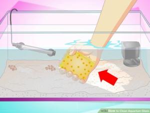 1.استفاده از اسفنج برای تمیزکردن شیشه اکواریوم